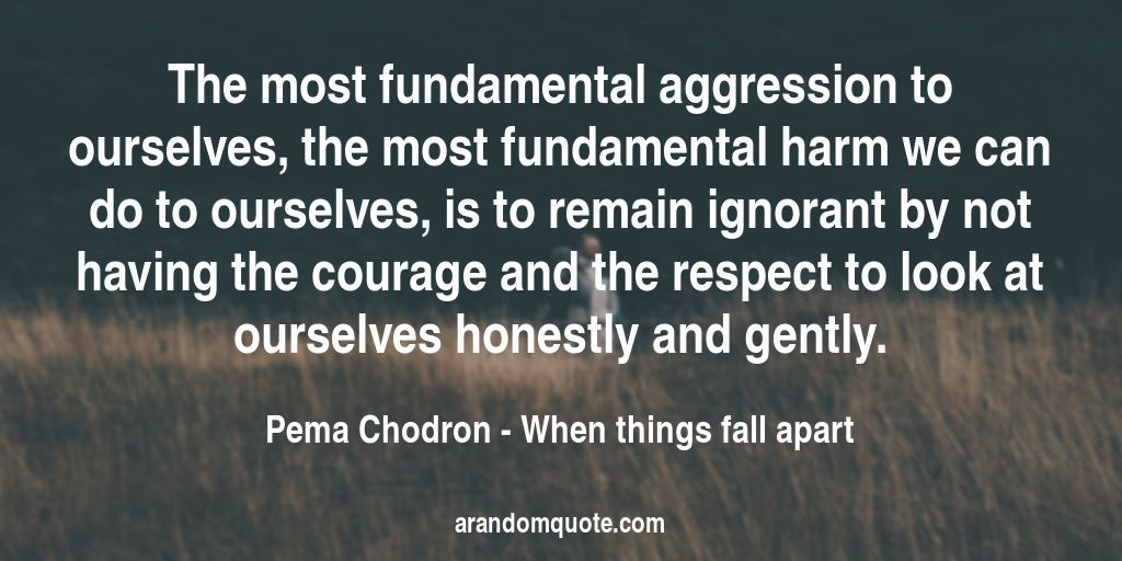 The most fundamental aggression to ourselves, the most fundamental harm we can do to ourselves, is to remain ignorant by not having the courage and the respect to look at ourselves honestly and gently. | When things fall apart - Pema Chodron
